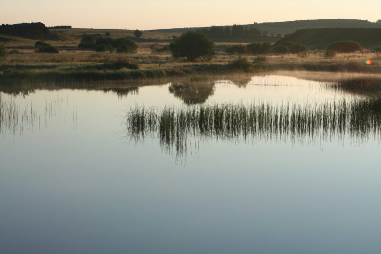 Aménagement et valorisation d'un site abritant la moule perlière et une avifaune remarquable le long de la rivière Bès sur l'Aubrac